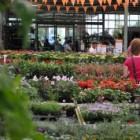 Tuincentrum Overvecht; complete en sfeervolle tuincentra