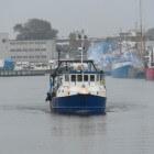 De visserijsector in Nederland