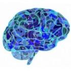 Neuromarketing: technieken, toepassingen en ethisch bezwaar
