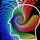 Unity, het zevende beïnvloedingsprincipe van Cialdini