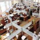 De kantoortuin: een goed idee of niet?
