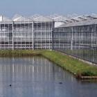 Winnen van aardwarmte voor glastuinbouw