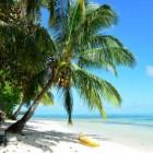 De leukste vakantiebanen in het buitenland