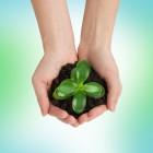 Wat is een ISO 14001 milieuzorgsysteem?
